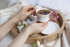 Café fragante en manos femeninas Desayuno en cama en una bandeja de madera Las flores son rosadas y blancas romance Copie el espa imagen de archivo libre de regalías