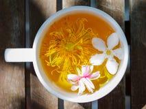 Café, gosto, luz, bokeh, flora, jardim, chá, copo, sumário, SU Imagem de Stock