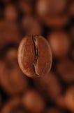 Café-haba Fotografía de archivo libre de regalías