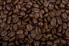 Café-habas Foto de archivo