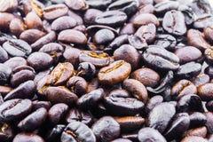 Café, habas Fotos de archivo