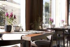 Café, interior, día soleado fotos de archivo