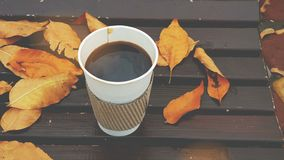 Café a ir no banco vídeos de arquivo