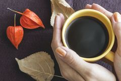 Café a la taza Imagen de archivo libre de regalías