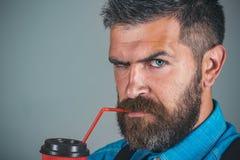 café mûr de boissons de hippie Mâle avec la barbe Complètement de l'énergie Café bonjour l'homme barbu brutal avec emportent photographie stock libre de droits