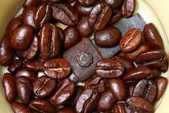 Café - moedor de Coffe - feijão de café Fotos de Stock Royalty Free