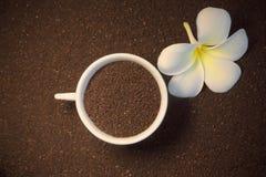 Café molido y flor Imagen de archivo libre de regalías