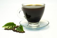 Café muy fuerte en la taza de cristal imagen de archivo