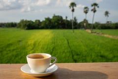 Café na madeira com fundo da natureza Foto de Stock