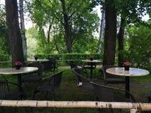 Café na natureza Imagem de Stock