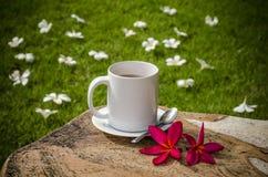 Café no jardim Fotografia de Stock Royalty Free