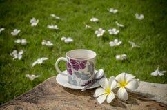 Café no jardim Imagem de Stock