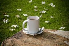 Café no jardim Fotos de Stock Royalty Free