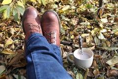 Café no jardim Imagem de Stock Royalty Free
