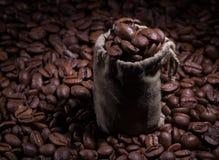 Café no saco fotografia de stock