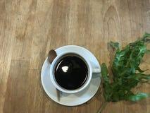 Café noir chaud d'Americano avec la feuille verte fraîche Photo libre de droits