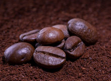 Café nos feijões fotografia de stock
