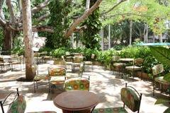 Café ocasional Imagens de Stock