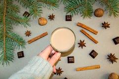 Café ou chocolate quente do cacau da bebida do Natal com leite em um copo pequeno Ramo de árvore do abeto, porcas, anis de estrel Fotografia de Stock