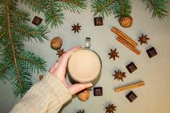 Café ou chocolate quente do cacau da bebida do Natal com leite em um copo pequeno Ramo de árvore do abeto, porcas, anis de estrel Fotografia de Stock Royalty Free