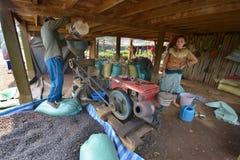 Café, Paksong, meseta de Bolaven, Laos Imagen de archivo
