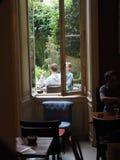 Café pendant l'été photo libre de droits