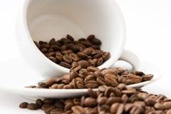 Café plu à torrents Images stock