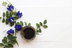 Café preto com a flora local azul da ervilha de borboleta da flor de Ásia imagens de stock
