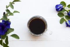 Café preto com a flora local azul da ervilha de borboleta da flor de Ásia fotografia de stock royalty free