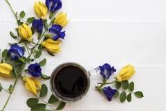 Café preto com a flora local azul da ervilha de borboleta da flor de Ásia fotos de stock