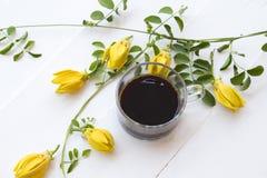 Café preto com a flora local do ylang amarelo do ylang da flor de Ásia imagens de stock