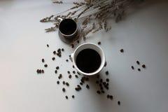 Café preto e feijões imagem de stock