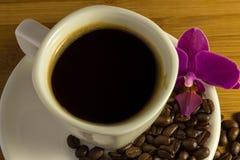 Café saboroso com orquídea Fotos de Stock