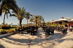 Café sob as palmas Fotografia de Stock Royalty Free