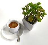 Café solamente fotografía de archivo