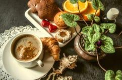 Café soluble avec les pâtisseries et le chocolat, tranches oranges au sujet du cyclamen Photo stock