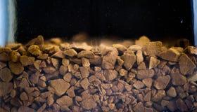 Café soluble dans le bol en verre Photo libre de droits