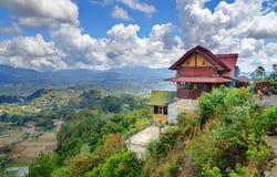 Café sur la route avec la vue du gisement vert de riz en Tana Toraja Images libres de droits