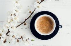 Café y flor de cerezo Fotografía de archivo