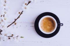 Café y flor de cerezo Imagenes de archivo