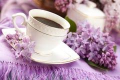 Café y lila fotos de archivo libres de regalías