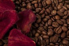 Café y pétalos color de rosa Fotos de archivo