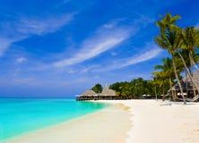 Café y palmas en una playa tropical fotografía de archivo