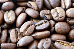 Café do fundo - os feijões Fotografia de Stock
