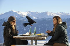 cafe above the city of Innsbruck. Austria. Alpes, December 2013 Royalty Free Stock Photography
