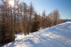 Monte Elmo, Dolomites, Italy - Mountain skiing and snowboarding. Sexten (Sesto), Trentino-Alto Adige, Alta Pusteria. Dolomites, Italy - Sexten Sesto royalty free stock images
