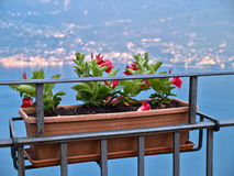 Cafe with beautiful view on Lake Garda Italy Stock Images