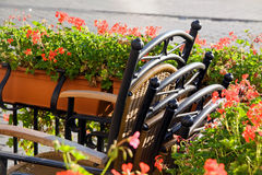 Cafe with chairs Royalty Free Stock Photography