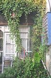 Cafe exterior plant art photography space. Clear environment with artistic vines stock photo