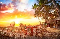 Cafe på stranden royaltyfri bild